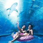 aquapark atrakcje Władysławowo dla dzieci
